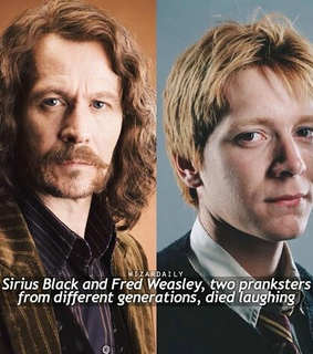 voldemort, deathly hallows and sirius black