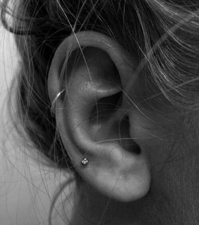 tragus, helix and white
