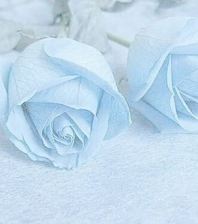 light blue, blue and pastel