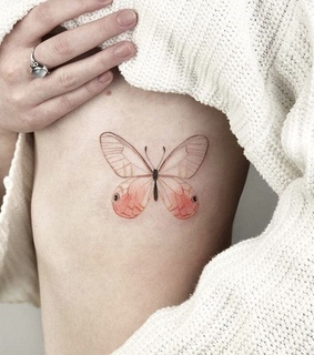 colour, butterfly and tattoo