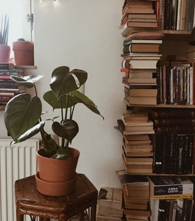 room, books and aesthetic