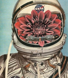 flowers, astronauta and tumblr