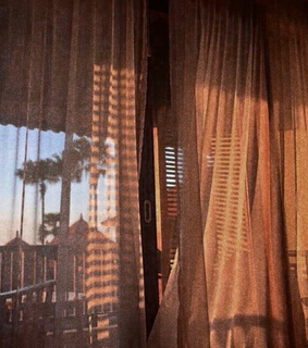 aesthetic, curtain and palms