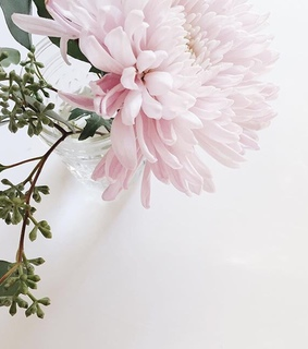pastel, white and pink