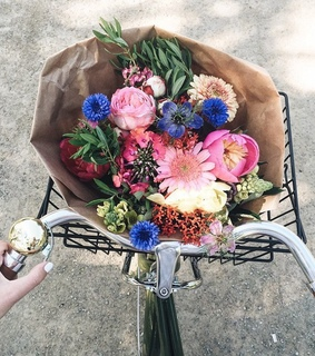 bike vintage, flowers pink roses and french france europe