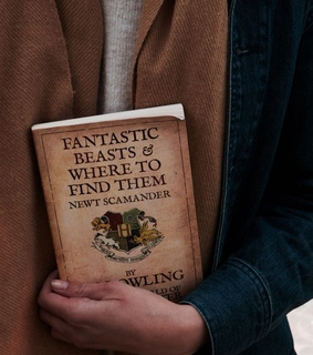 fantastic beasts, aesthetic and newt scamander