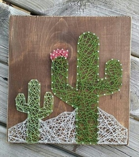 cactus and diy