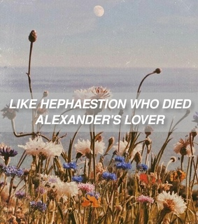 aesthetic, flowers and alexander