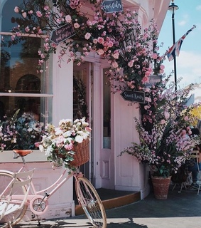 tumblr, baby pink and bicycle