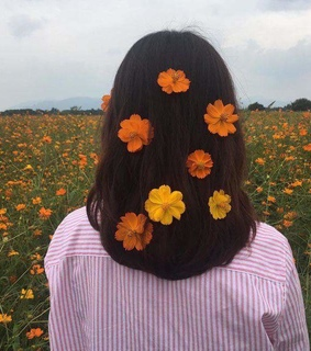 cabelo and flowers