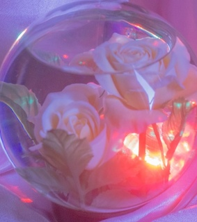 bubble, flowers and sunrise