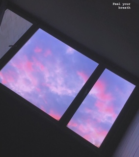 pink, ? and window