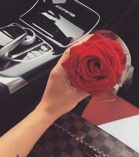 gift, luxury and cute