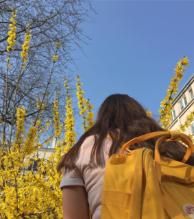 backpack, flower and flowers