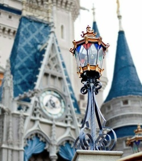 Dream, aesthetic and beauty and the beast