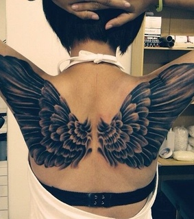 bird, wing and back