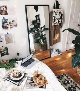 aesthetic, theme and plants