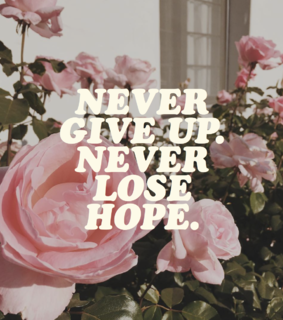 quote, never give up and aesthetic