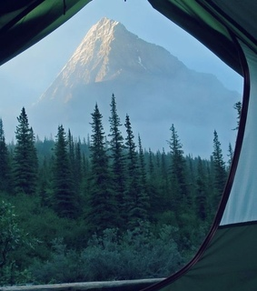 camping, nature and tent