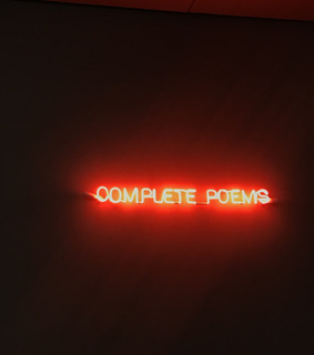 art, neon and poems