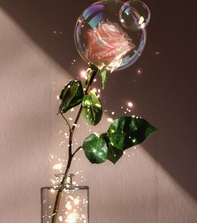 aesthetic, beautiful and bubbles