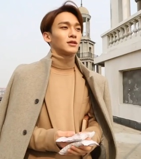 Chen, aesthetic and exo
