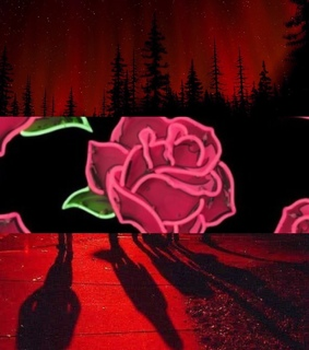 fire, quites and roses