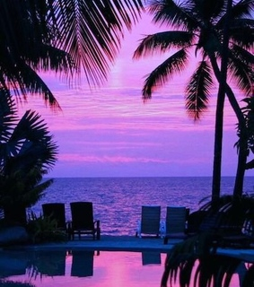 purple, beach and blue