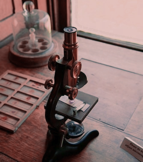 microscope, pink and science