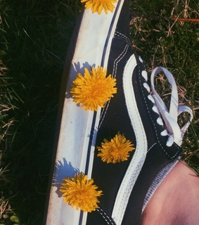 vans off the wall, springtime and beauty