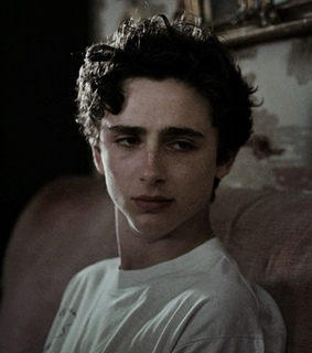 timothee chalamet, theme and rp