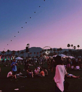 coachella, concert and festival