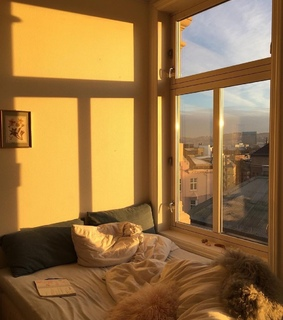 sun, bed and wake up