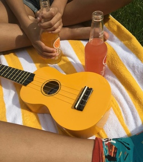 color, colorfull and ukulele