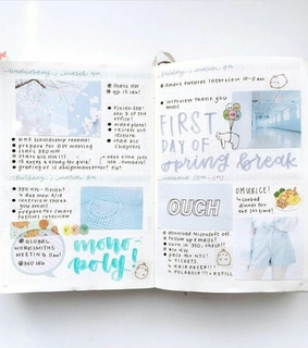 diary, journal and blue