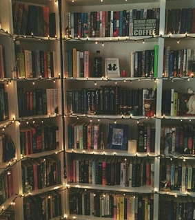 reading, lights and bookshelf