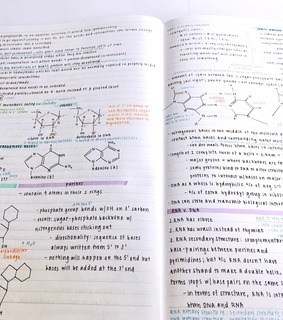 notes, school and science