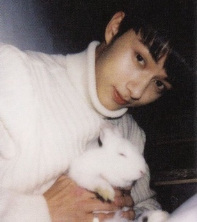 lq, aesthetic and bunnies