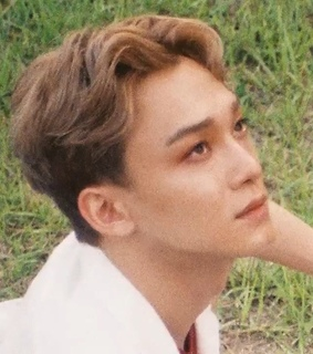 Chen, low quality and exo