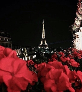 love, paris and flowers