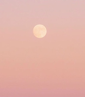 shades, sunrise and pink