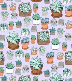 pattern, succulents and plants