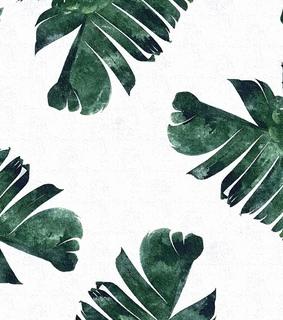 backgrounds, pretty and palm leaves