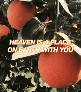 aesthetic, quote and summer