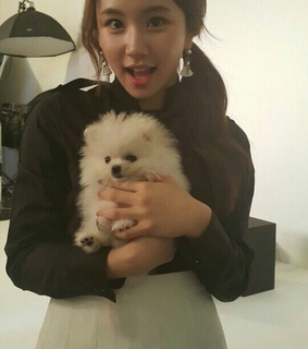 chaeyoung, lq twice and gg