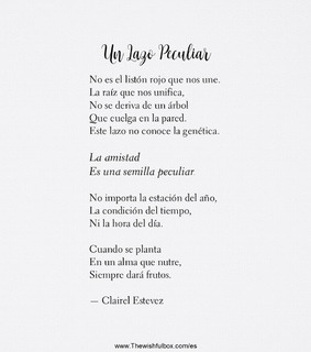 cosas bonitas, clairel estevez and frases