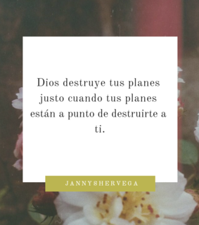 quote, amor and dios