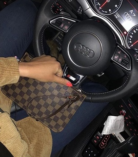 ?louisvuitton and audi