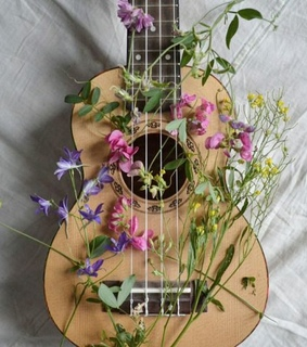 flowers, guitar and music