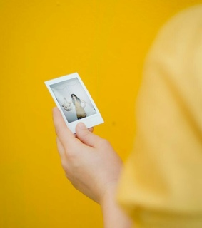 photo, yellow and colour